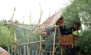 Vögelhaus_klein