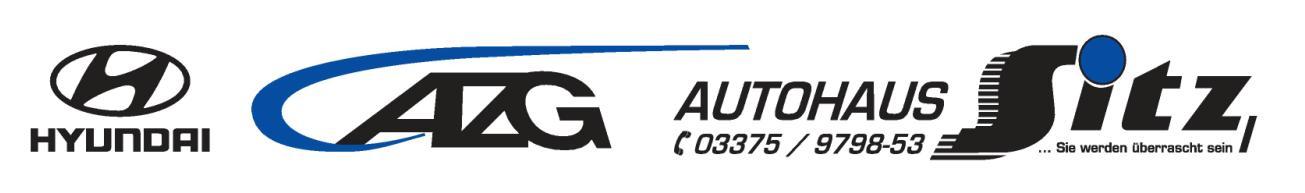 LOGO Autohaus Sitz Hyundai 11.14-page-001