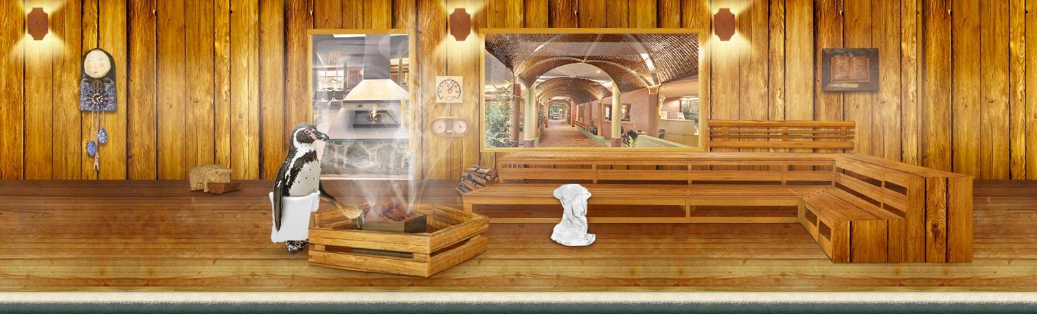 header_sauna_big
