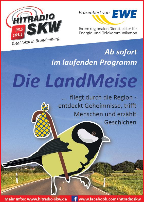 Die Landmeise Flayer